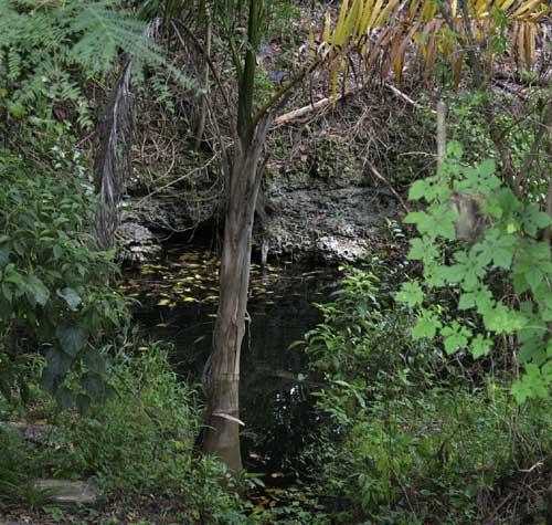 Ye olde swimming hole