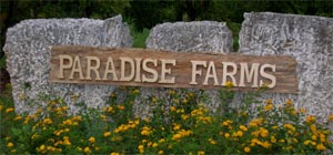 paradise-sign