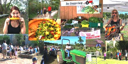 Farm Day fun! Collage by Margie Pikarsky