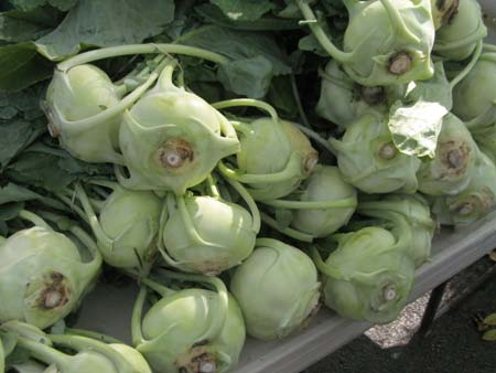 Lots of kohlrabi at market.