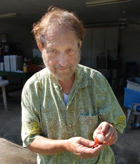 Grower Steve Green getting ready to taste a lychee for ripeness.